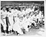 1969 Baseball Team Portrait by North Carolina Agricultural and Technical State University